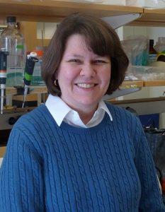 Ann Marie Zavacki, PhD,