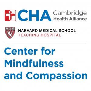 Mindfulness-Based Stress Reduction (MBSR)