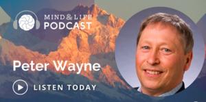 [Podcast] Mind & Life: Peter Wayne – Ecology of Mind